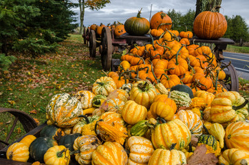large pile of gourds and pumpkins spilling off old wagon