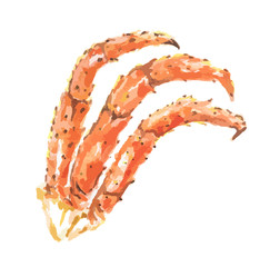 Isolated watercolor crabs claws on white background. Helathy gourmet seafood.