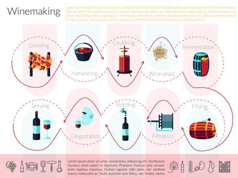 flat winemaking infographic
