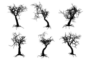 scary tree silhouettes on the white background