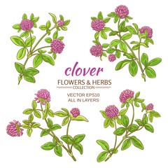 clover vector set