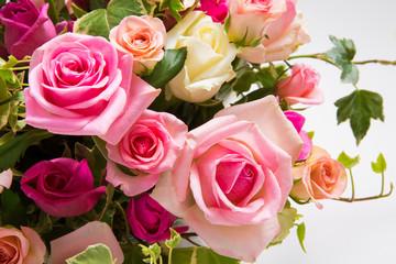 バラの花アップ