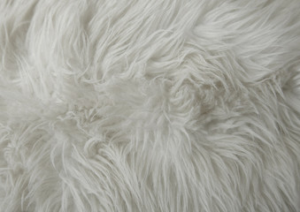A full page of white fluffy material texture Wall mural