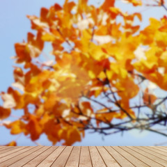Table Top And Blur Yellowed Tree of Background