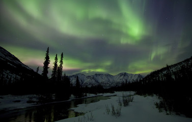 Aurora borealis or northern lights above the mountains and over the Wheaton River outside of Whitehorse, Yukon Territory, Canada.