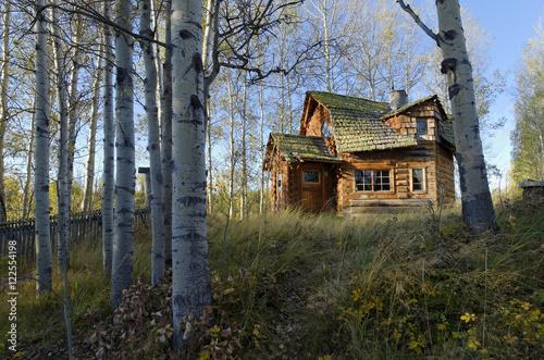 funky log cabin 83 mile house cariboo region british columbia