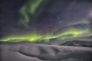 Northern lights above snow covered tundra, Yukon, Canada