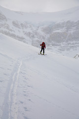 A skier uptracking on the Wapta Icefields, Banff National Park, Alberta, Canada