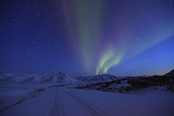 Aurora borealis or northern lights over the Dempster Highway,Yukon Territory, Canada.