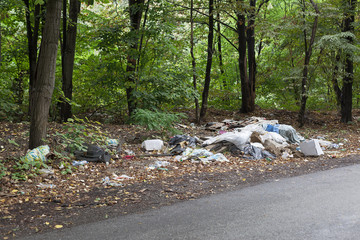 illegal dump near the road in the woods