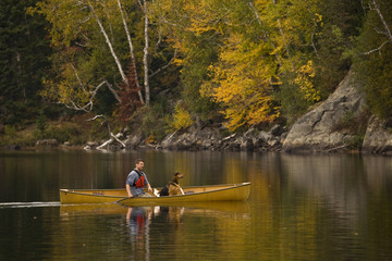 Young man canoeing with dog on Oxtongue Lake in autumn, Mukoka, Ontario, Canada.