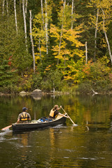 Young couple canoe on Oxtongue Lake in autumn, Mukoka, Ontario, Canada.