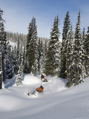 A pair of male snowmobilers carve up fresh powder on a glorious day in the Monashee mountains, in the North Thompson region near Valemount, British Columbia, Canada