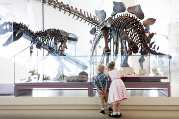 Girl and boy looking at dinosaur fossils at Royal Ontario Museum, Toronto, Ontario, Canada