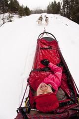 Young girl riding in dogsled in Fernie, BC, Canada.