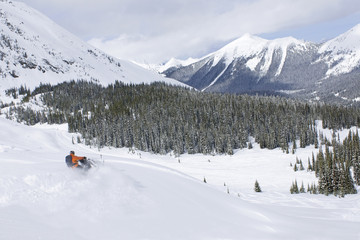 A lone snowmobiler cuts his way across fresh powder in the Monashee mountains, North Thompson region near Valemount, British Columbia, Canada