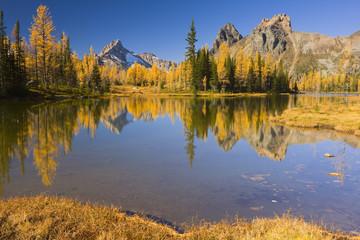 Small Lake in the Opabin Plateau, Lake O'Hara, Yoho National Park, British Columbia, Canada