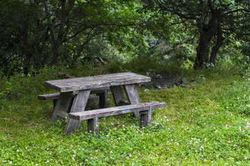 Bench in a nice forest area