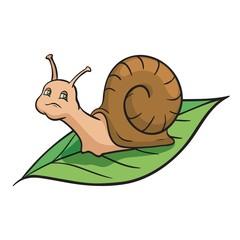 Snail crawling on the green leaf. Color vector illustration
