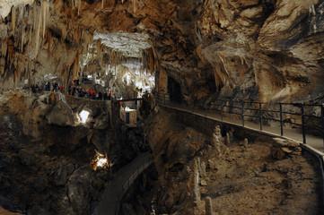 Stalactites and stalagmites inside the Postojna cave (Postojna Jama), Slovenia