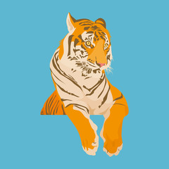 Illustration of Tiger on blue background.
