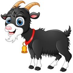 Cute black goat cartoon
