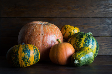 Pumpkins of different sizes and different colors on a brown background.