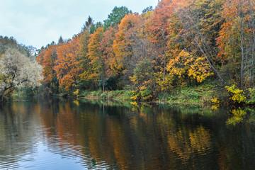 Autumn landscape. Park with lake.