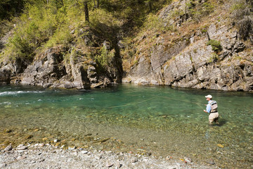 Fly-fishing on tributary of Elk River near Fernie, Elk Valley, East Kootenays, British Columbia,  Canada.
