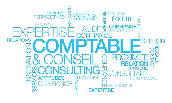 Expertise Comptable conseil consulting nuagede mots bleu texte consultant audit expert comptabilité