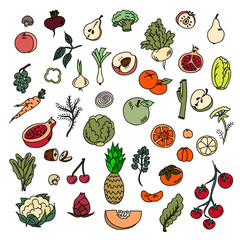 Set colors elements vegetables and fruits. Vegetarian food