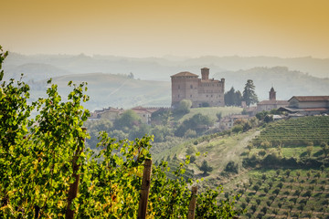 Wall Mural - Panoramic view of the Langhe vineyards with Grinzane Cavour Castle