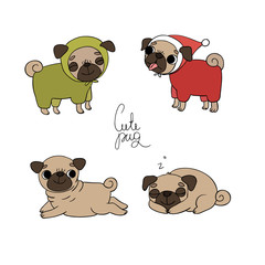 Cute Pugs. Pet clothes.