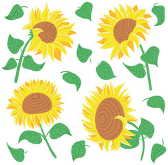 Decorative beauty sunflowers set
