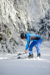 Young happy female skier putting on her skis and enjoying sunny day against beautiful snow covered trees on the background. Carpathian Mountains, Bukovel, Ukraine
