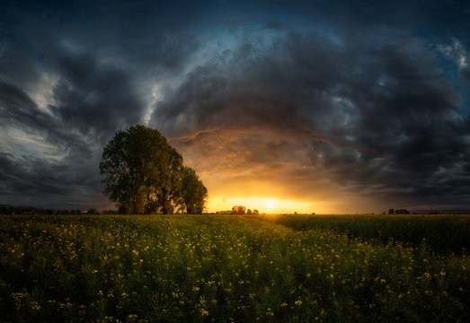 Dramatic sunset over meadow