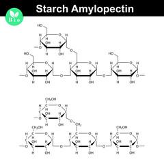 Amylopectin polymer molecular structure