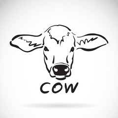 Vector of hand sketch a cow head on a white background. Animal d