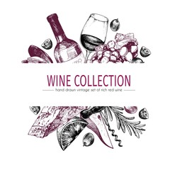 Vector hand drawn color template illustration of wine and appetizers. Bottle, glass, corcksrew, cheese, fruits ans cpices.