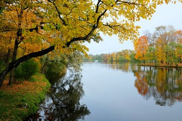 Autumn sunny landscape with forest nature, colorful autumn landscape, nature background, beautiful reflection from the water.