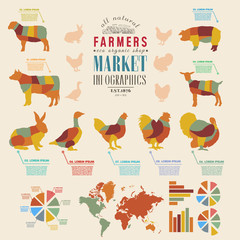 Farm infographics farm animals chickens, cows, sheep, goats