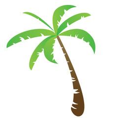 Funny palm tree