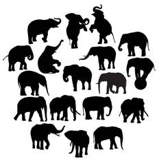 Cute Elephant Silhouettes, illustration art vector design
