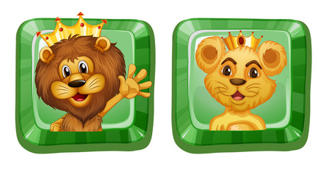 Lion and lioness on square badges