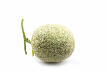 Close up of whole cantaloupe fruit. Green melon.