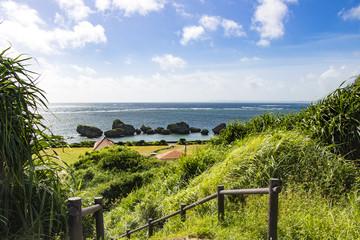 丘から海を望む
