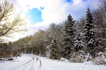 White winter landscape in Germany .