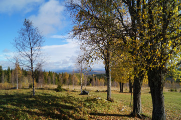 Landscape north of Sweden
