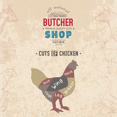 Cuts of chicken. Butcher shop retro poster