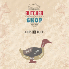 Cuts of duck. Butcher shop retro poster
